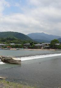 「日本中世の雨と水-自然と文化とを繋ぐ回路を歴史のなかに探る-」