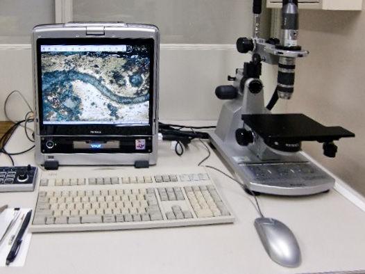 デジタル実体顕微鏡
