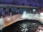 「水族館の経営」を学ぶ授業を実施 -国際経営学科「経営学の基礎」 第2次オリエンテーションー