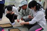 【夢米棚田プロジェクト】籾まきを行いました