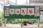「写真がとりたくなるような別府大学駅」アートプロジェクト開始!!