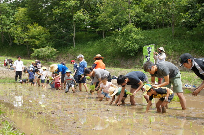 【夢米棚田プロジェクト】手作業の田植え活動を行いました。