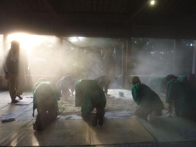 【発酵食品学科】白鬚田原神社のどぶろく造りに参加しました