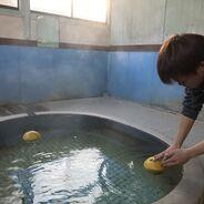 冬至に前田温泉で「ざぼん湯」を実施しました