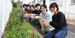 【発酵食品学科】学内にミニハーブ園ができました!